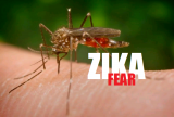 Bệnh do Virus Zika